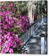 Spring At Magnolia Plantation 4 Acrylic Print
