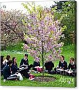 Spring Blossom In Kew Gardens London Acrylic Print