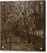 Spring Blossoms Acrylic Print by Henry Muhrmann