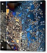 Spring Blossoms In The City - New York Acrylic Print