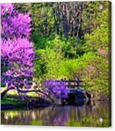 Spring Blossoms On Lake Marmo Acrylic Print