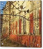 Spring Buds And Urban Decay 3 Acrylic Print