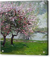 Spring By The River Acrylic Print