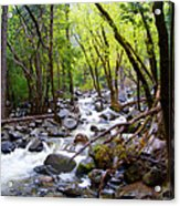 Spring Cascade Of Water From Bridal Veil Falls In Yosemite Np-2013 Acrylic Print