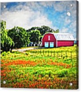 Spring Charm In The Hill Country Acrylic Print