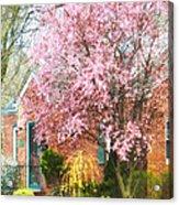 Spring - Cherry Tree By Brick House Acrylic Print