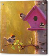 Spring Chickadees 1 - Birdhouse And Birch Forest Acrylic Print