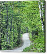 Spring Country Road Acrylic Print