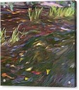 Spring Creek In Oak Canyon Park Acrylic Print