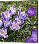 Spring Crocus With Scripture Acrylic Print