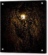 Spring Evening Golden Glow Acrylic Print