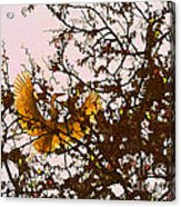 Spring Flight Acrylic Print