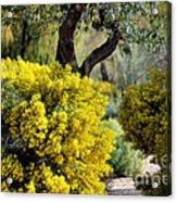 Spring Flora Acrylic Print