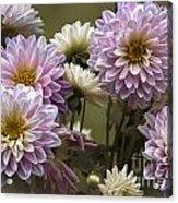 Spring Flowers Acrylic Print by Joe McCormack Jr