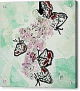 Spring Flutter Acrylic Print