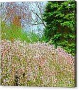 Spring Foliage Acrylic Print