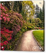 Spring Footpath Acrylic Print