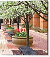 Spring Fragrance Acrylic Print