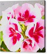 Spring Garden 3 Acrylic Print