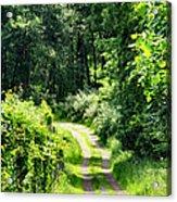 Spring Hikes Acrylic Print