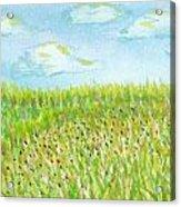 Spring Hill Acrylic Print