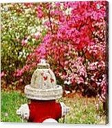 Spring Hydrant Acrylic Print