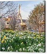 Spring In Boston Acrylic Print