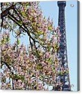 Spring In Paris Acrylic Print