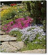 Spring In The Garden Dsc03678 Acrylic Print