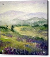 Mountain Spring Iv Acrylic Print
