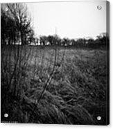Spring Is Near Holga Photography Acrylic Print