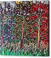 Spring Night Acrylic Print by Matthew  James