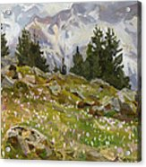 Spring On A Northern Slope Acrylic Print