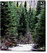 Spring On The Stream Acrylic Print by Will Boutin Photos