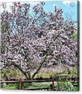 Spring Picnic Acrylic Print