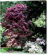 Spring Retreat Acrylic Print