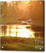 Spring Sunset Acrylic Print by Alana Ranney