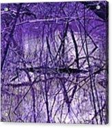 Spring Swamp Acrylic Print by Michael Sokalski