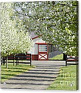 Spring Time At The Farm Acrylic Print
