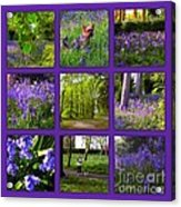 Spring Woodland Picture Window Acrylic Print