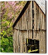 Springtime In Kentucky Acrylic Print