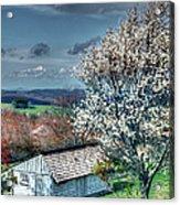 Springtime In The Blue Ridge Mountains I Acrylic Print by Dan Carmichael