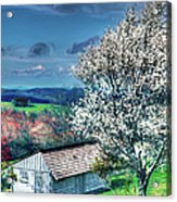 Springtime In The Blue Ridge Mountains II Acrylic Print by Dan Carmichael