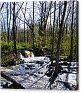 Springtime In The Mountains Acrylic Print