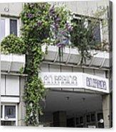 Springtime Lilacs An Farina Cologne Germany Acrylic Print