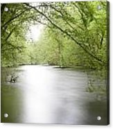 Springtime River Acrylic Print