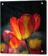 Springtime Tulips Digital Painting Acrylic Print