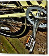 Sprocket And Chain Acrylic Print