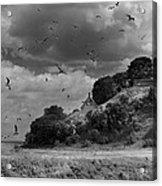 Sprogoe Lighthouse Acrylic Print by Robert Lacy