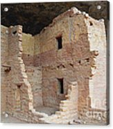 Spruce Tree House Structure Acrylic Print